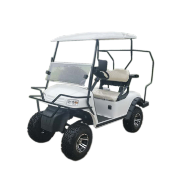 2 seats 4WD electric off Road Golf Cart