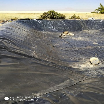 Pond liner geomembrane sheet for fish farming