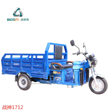 High quality adult electric tricycle for cargo use