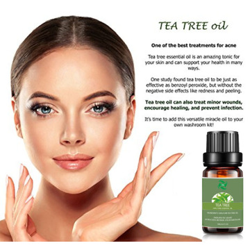 body shop tea tree oil spray undiluted