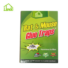 Cardboard  Mouse Trap Boards