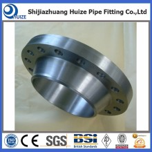 Forged SS Rised Face WN Flange