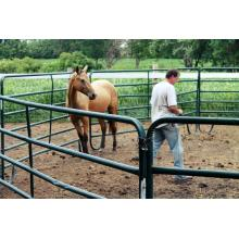 Best Price Horse Fence Panel With Galvanized Pipe