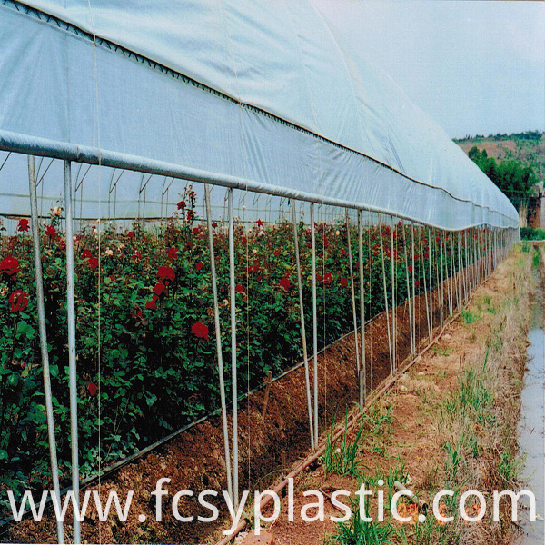 blue transparent woven film