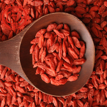 Superfood Goji Berry Dried Fruit