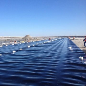 HDPE LDPE geomembrane plastic sheet for shrimp pond