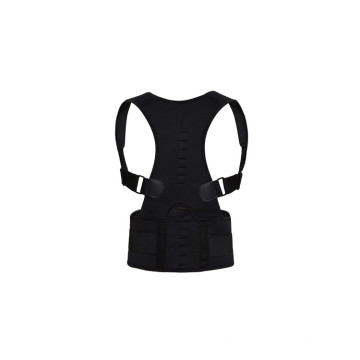 black Adjustable Back Support