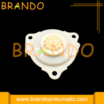 1261253 1271526 Diaphragm Repair Kit