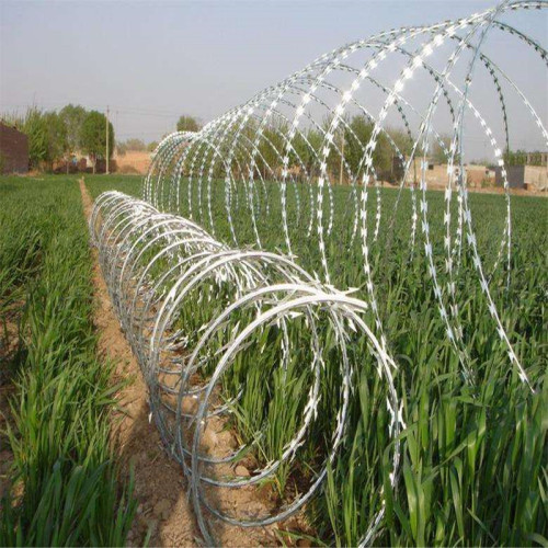 razor barbed wire price meter bulk barbed wire