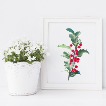 Holly Fresh Branch With Leaves And Berries Art Poster Canvas Prints , Tropical Plants Prints Wall Art Pictures Home Decor