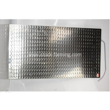 Stainless steel Save electricity Piglet Heating Plate