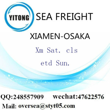 Xiamen Port LCL Consolidation To Osaka