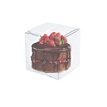 Custom Folding Acetate Gift Plastic Clear PVC Box