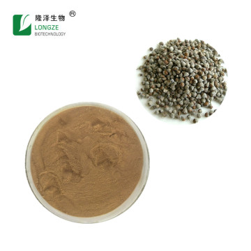 Top quality Bulk chasteberry fruit powder