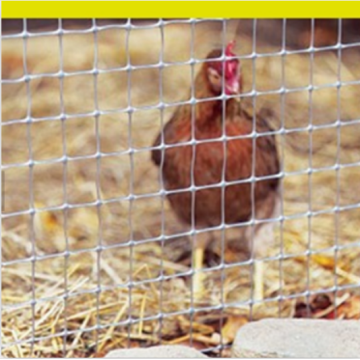 Thailand Grey Plastic Mesh Poultry Netting