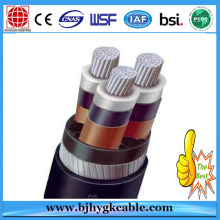 3.6/6kv Aluminum Alloy Conductor XLPE Insulated PVC Sheathed Steel Tape Armoured Power Cable