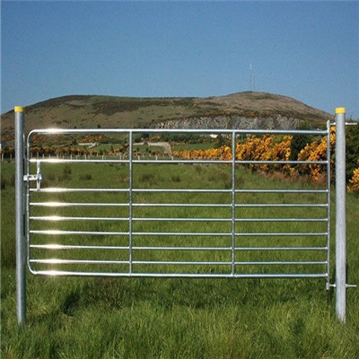 cattle fence