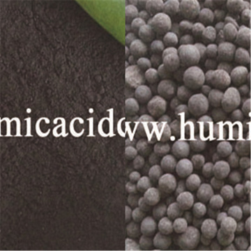 70% CXKJ humic acid powder from Xinjiang leonardite