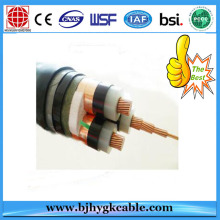 1KV  Electric Power Cable