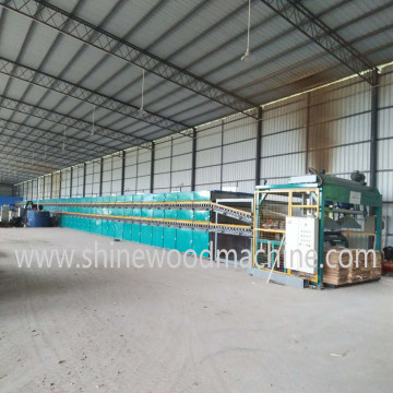 Shine Veneer Drying Machine for Plywood