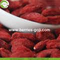 Buy Natural Nutrition Dried Fruit Lycium Berries