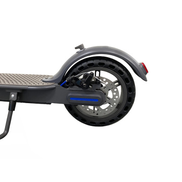 New Design OEM Citysports Electric Scooter