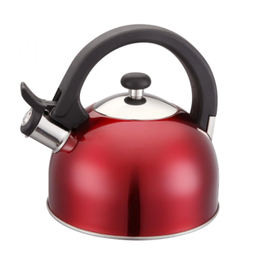 Stainless Steel Whistling Kettle Eco-Friendly