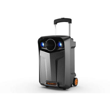 Best Price 8inch Trolley DJ Speaker