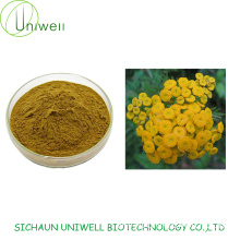 High Quality Tansy Extract Powder 4:1 10:1