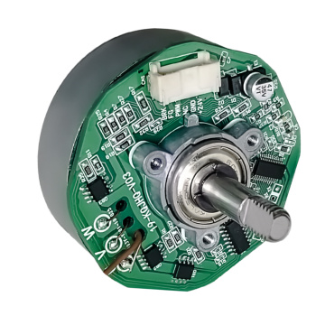 12V Brushed Motor, DC Brush Motor for Washing Machine & Brush Motor for Vacuum Cleaner Customizable