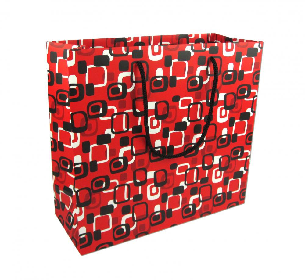 Shopping Flexo Clothes Paper Bag With Logo