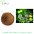 Dandelion Extract Powder 4:1 10:1