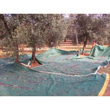 High-quality New Olive Net