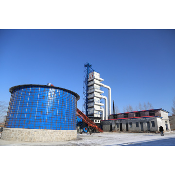 Drying Machine for Grain Seed