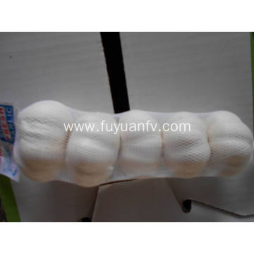 Pure white garlic small package