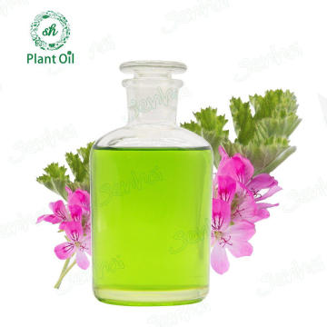 Wholesale Natural Pure  Flavour Oil Geranium Oil