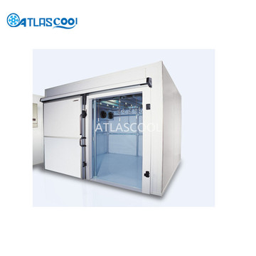 Blast Freezer For Fish And Chicken
