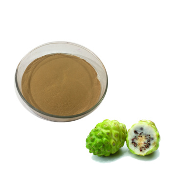 Best organic noni fruit powder