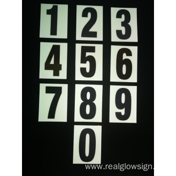 Realglow Photoluminescent  Flat Number