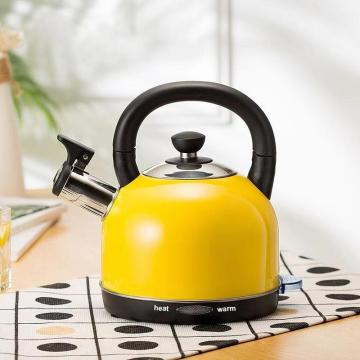 1.2L fashional electric kettle