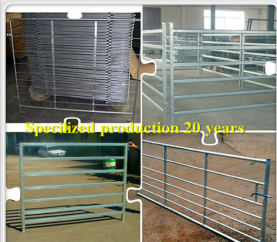 Farm Area Enclosure Wire Mesh Gate