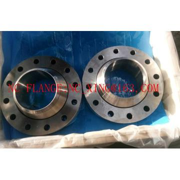 Forged Swivel Flanges RTJ