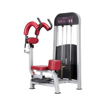 High Quality Gym Equipment Rotary Torso Machine