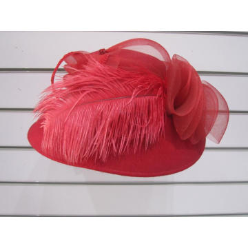 Ladies' Wool Feather Desiner Church hats