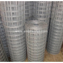 "Galvanized Welded Wire Mesh Rolls With 1/2"" Aperture"