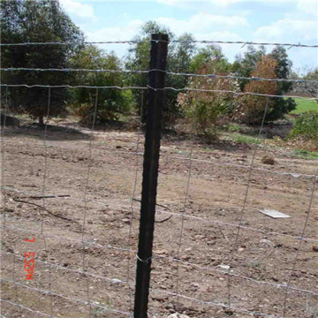 USA Type Farm fence studded T posts