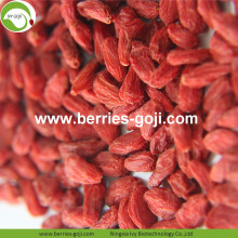 Factory Supply Healthy Nutrition Natural Lycium Berries