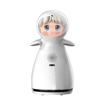 Electronic Toy Style Family Companion Service Robot