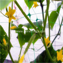 Vegetables/flowers plant support net