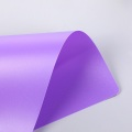 0.2mm High quality rigid transparent PP